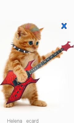 dieren muziek999