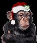 kerstdieren1134452