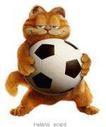 Garfield022