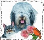 Hond&kat300000