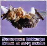 Welterusten/dieren114556