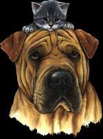 Hond&kat3333