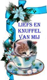 knuffel000