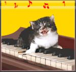dierenmuziek12
