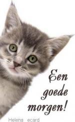 goede morgen(dieren)33333