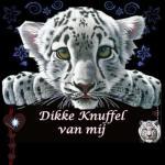 knuffe4558