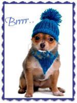 winter(humor)2222