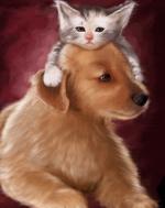 hond&kat5555