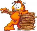 Garfield0405