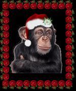 kerstdieren113445123