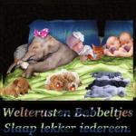 Welterusten/dieren11455
