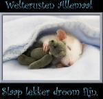 Welterusten/dieren2