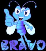 Bravo00000