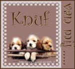 knuffel55556