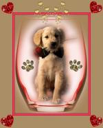 honden/lief9999