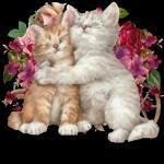 katten/lief0999