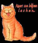 lachen3222666fv