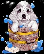 Honden(cartoons)3222