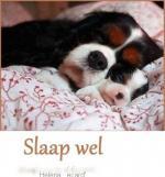 Welterusten/dieren1